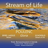 Stream of Life by Various Artists