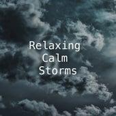 Relaxing, Calm Storms de Thunderstorm Sound Bank