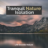 Tranquil Nature Isolation by Various Artists