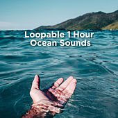Loopable 1 Hour Ocean Sounds by Ocean Waves For Sleep (1)