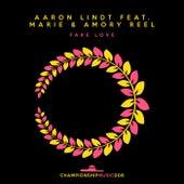 Fake Love de Aaron Lindt
