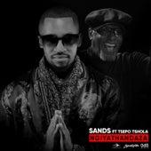 Ngiyathandaza by The Sands