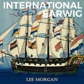 International Earwig by Lee Morgan