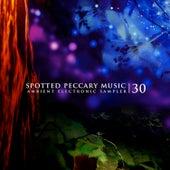 30 de Various Artists
