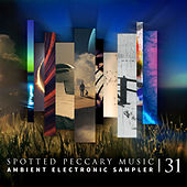 31 de Various Artists