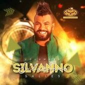 Volume 24 von Silvanno Salles