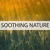 Soothing Nature by Nature Sounds (1)