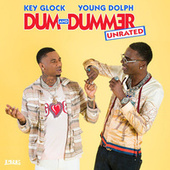 Dum and Dummer de Various Artists