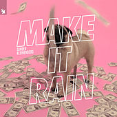 Make It Rain de Sander Kleinenberg
