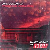 Striker (Liam Wilson Remix) von John O'Callaghan