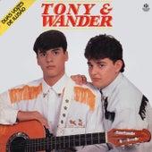 Duas Vozes de Ilusão de Tony