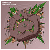 Surrender de Flux Pavilion