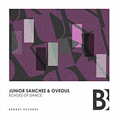 Echoes Of Dance by Junior Sanchez
