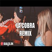 La Cobra Remix de DJ Alex