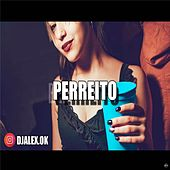 Perreito by DJ Alex
