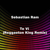 Te Vi (Reggaeton King Remix) de Sebastian Ram