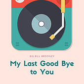 My Last Good Bye to You de Big Bill Broonzy