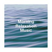 Morning Relaxation Music by Various Artists