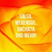 Salsa, Merengue, Bachata Und Mehr! de Various Artists