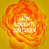 Latin Dance Hits Zum Tanzen de Various Artists