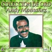 Andy Monta#ez Coleccion De Oro, Vol. 1 - Mujer Impura de Andy Montañez