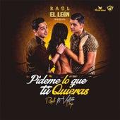 Pideme Lo Que Tu Quieras by Raúl