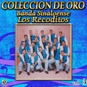 Banda Sinaloense Coleccion De Oro, Vol. 3 - Tu Abandono by Banda Los Recoditos