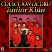 Junior Klan Coleccion De Oro, Vol. 3 - Gracias Por Tu Amor de Junior Klan