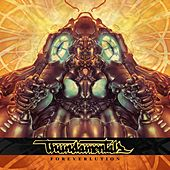 Foreverlution by Thundamentals