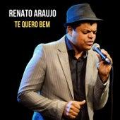 Te Quero Bem de Renato Araujo