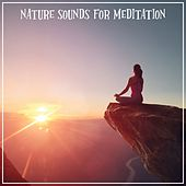 Nature Sounds for Meditation by Various Artists