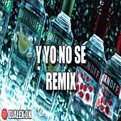 Y Yo No Se Remix de DJ Alex