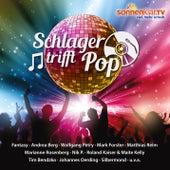 Schlager trifft Pop von Various Artists