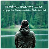 Beautiful Relaxing Music for Yoga, Spa, Massage, Meditation, Study, Sleep, Chill de Various Artists