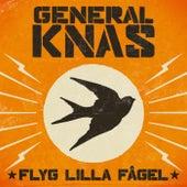 Flyg Lilla Fågel by General Knas