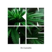 Dr. Cannabis by General Knas