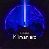 Kilimanjaro by Flexo