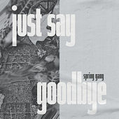 Just Say Goodbye by Spring Gang