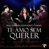 Te Amo Sem Querer (Ao Vivo Em Sete Lagoas, Brazil / 2019) de Paula Fernandes