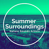 Summer Surroundings de Nature Sounds Artists