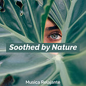 Soothed by Nature de Musica Relajante