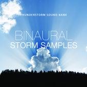Binaural Storm Samples de Thunderstorm Sound Bank