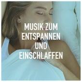 Musik zum entspannen und einschlaffen de Various Artists