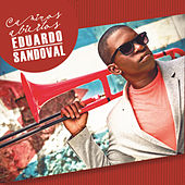 Caminos abiertos de Eduardo Sandoval