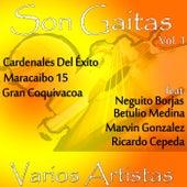 Son Gaitas, Vol. 1 de Various Artists