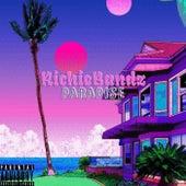 Paradise by RichieBandz
