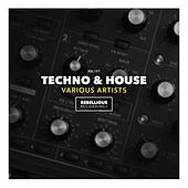Techno & House - EP di Various Artists