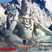 Vo Hai Shivay de Sukhwinder Singh