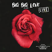 Big Big Love (Live) by k.d. lang