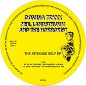 The Strange Self EP by Neil Landstrumm